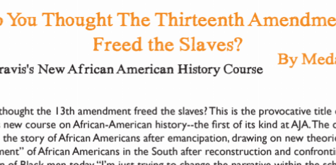 So You Thought the 13th Amendment Freed the Slaves?